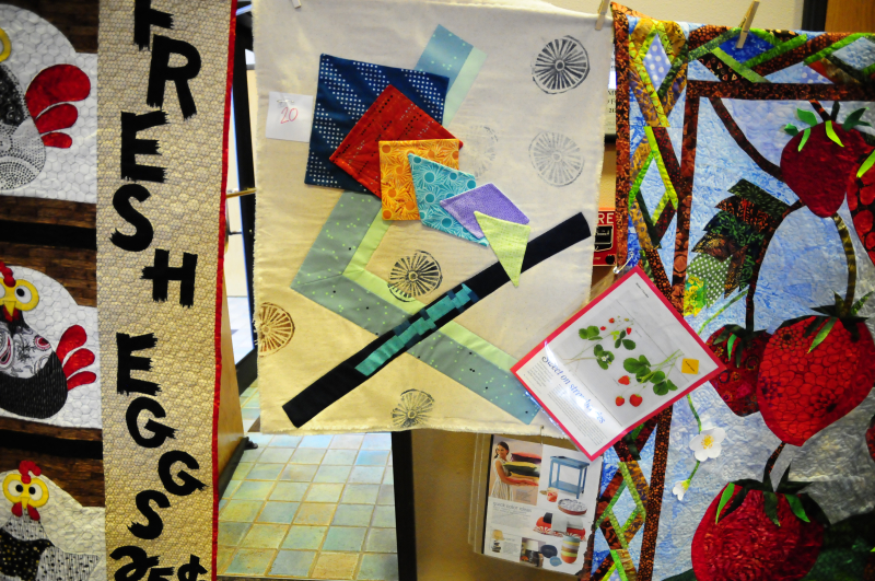MBQG July 2016 Challenge Quilts (15)