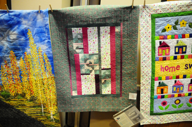 MBQG July 2016 Challenge Quilts (18)