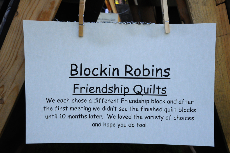 MBQG Show 2016 Blockin Robins (15)